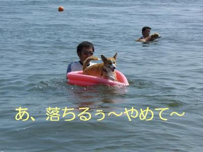 26bigdog_030
