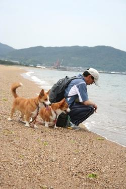 20086_038_4